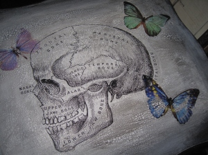 Old dictionary skull and digital butterflies design on the top.